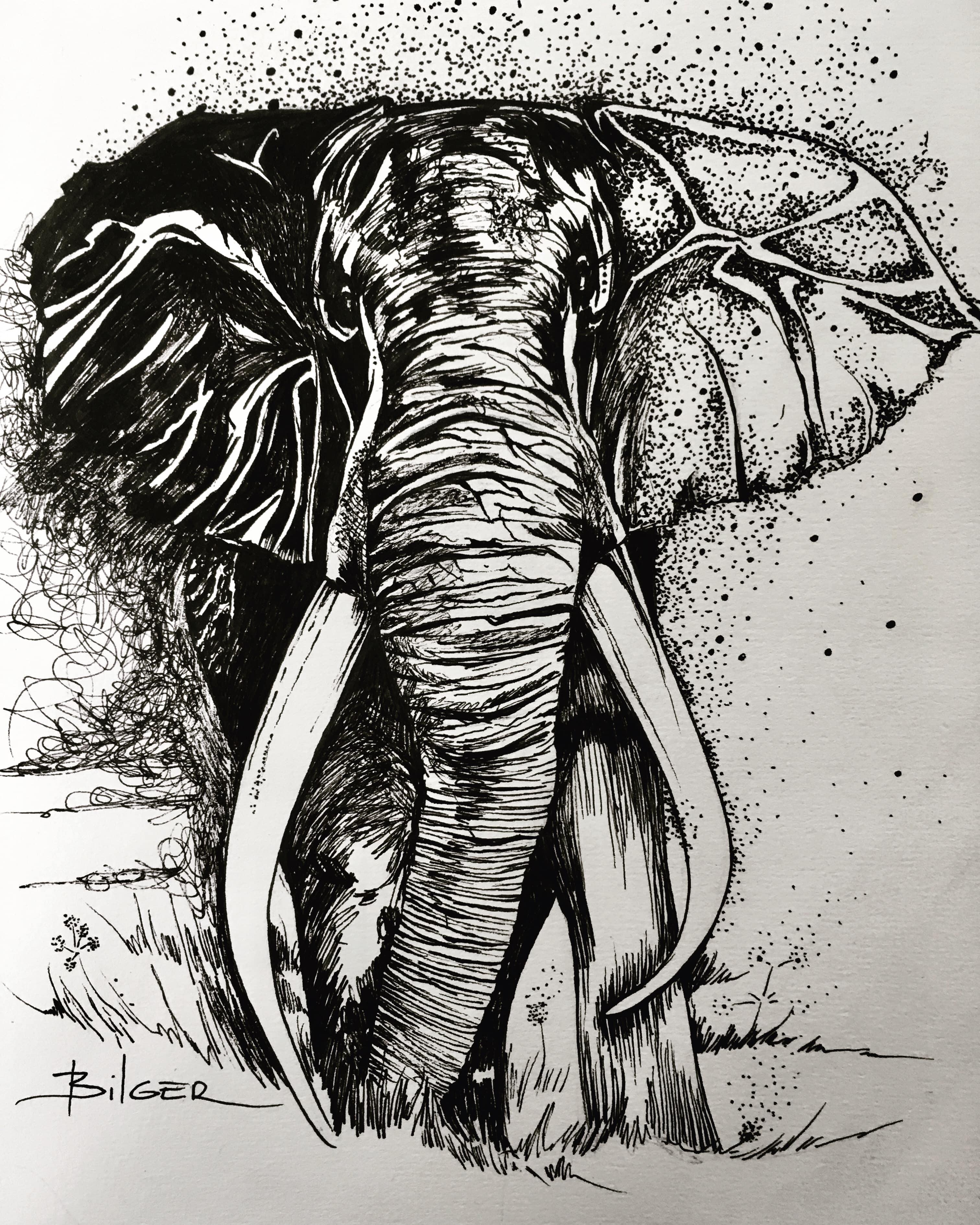 """""""Elephant"""", 2020. 1 image"""